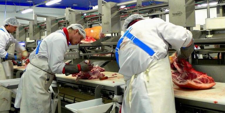 работа на мясокомбинате в Польше